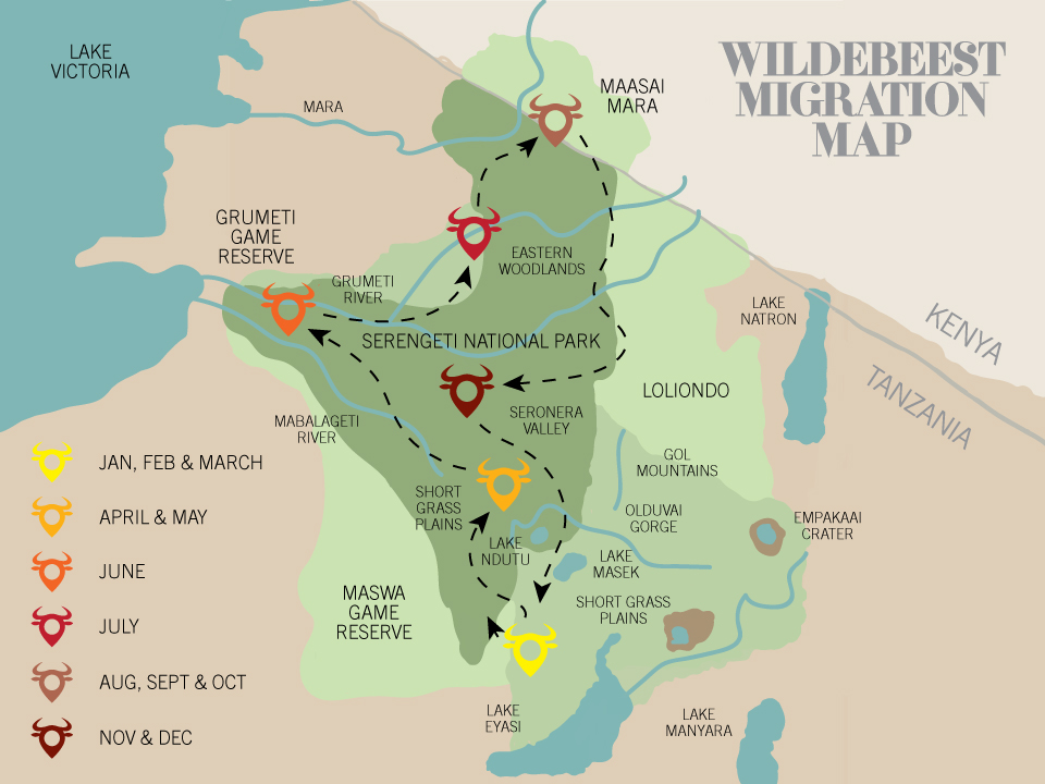 Traditional-Great-Wildebeest-Migration-Map