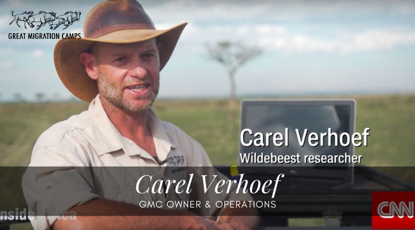 Carel - GMC owner and operations