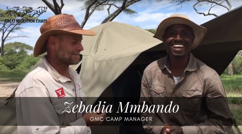 Zebadia - GMC camp manager