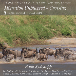 8D_7N MIGRATION UNPLUGGED - crossing season migration safari