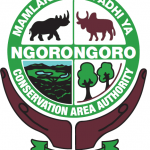 NCAA - Ngorongoro